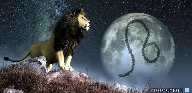 aslan_burcu.jpg