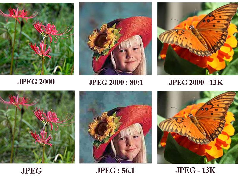 JPEG 200