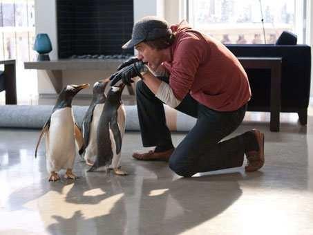 Mr-Poppers-Penguins-2.jpg