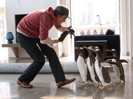 Mr-Poppers-Penguins-3.jpg