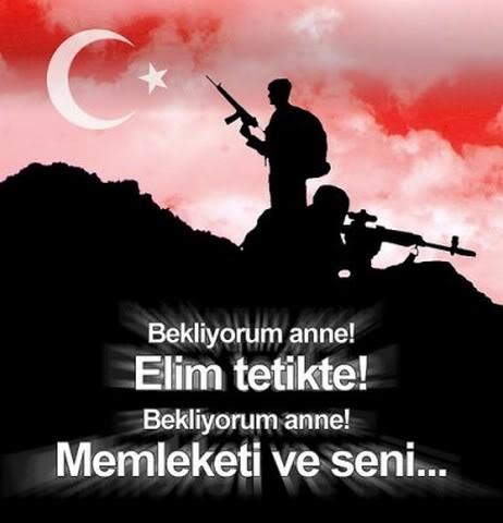 turkbayragi12.jpg