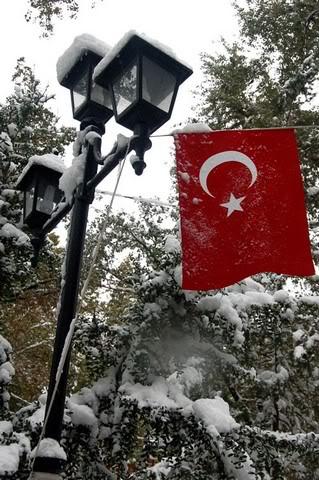 turkbayragi13.jpg