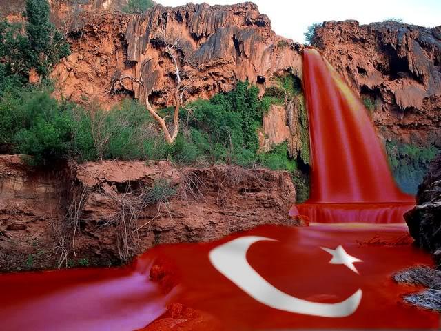turkbayragi16.jpg
