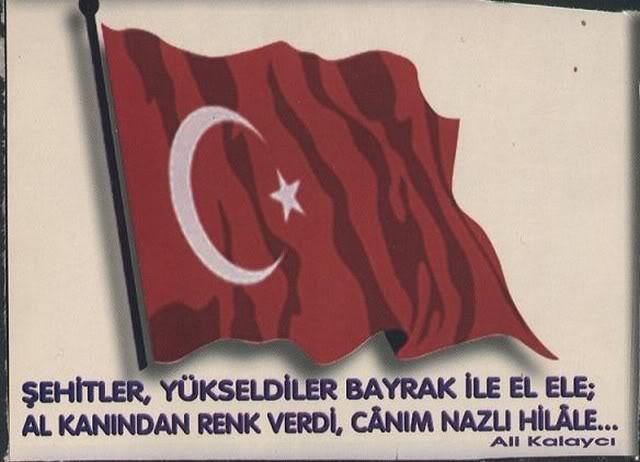 turkbayragi3.jpg