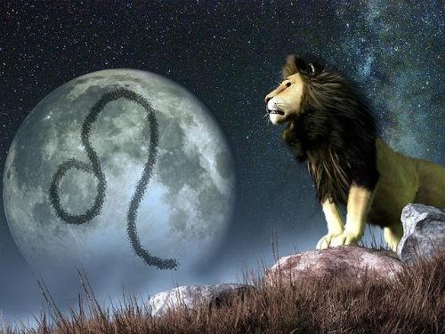 yukselen-aslan.jpg